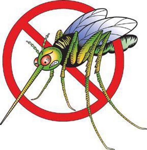sparay anti-zanzara naturale