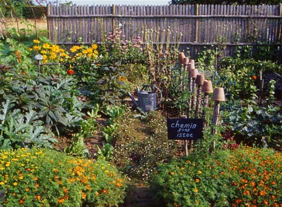 Consigli per l 39 orto estivo bioradar magazine for Orto giardino