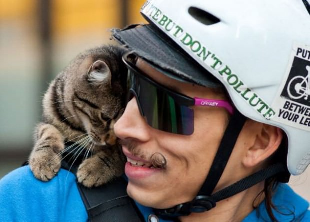 MJ, il gatto-postino di Philadelphia