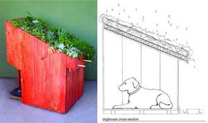 http://www.bioradar.net/bionews/architettura-da-cani-costruisci-con-le-tue-mani-le-cucce-disegnate-da-13-artisti/