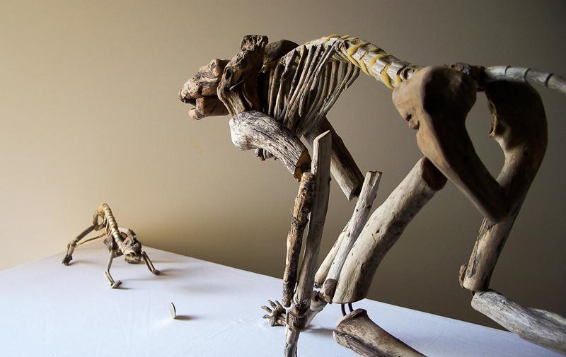 Fragile Skeletons, sculture fossili fatte con legno recuperato sulla spiaggia - Bioradar Magazine