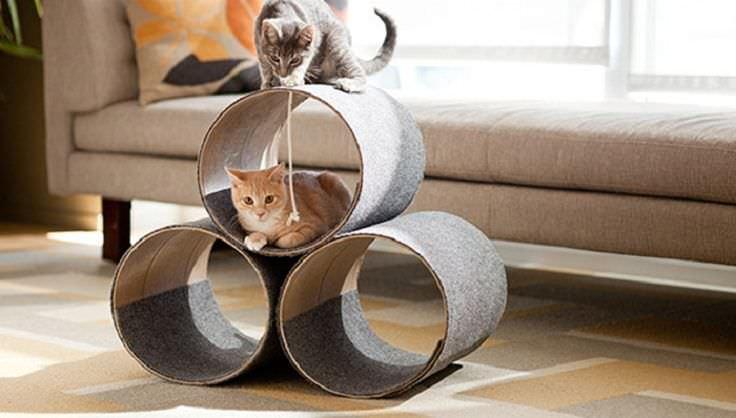 10 Idee per Realizzare dei fantastici Giochi per Gatti con