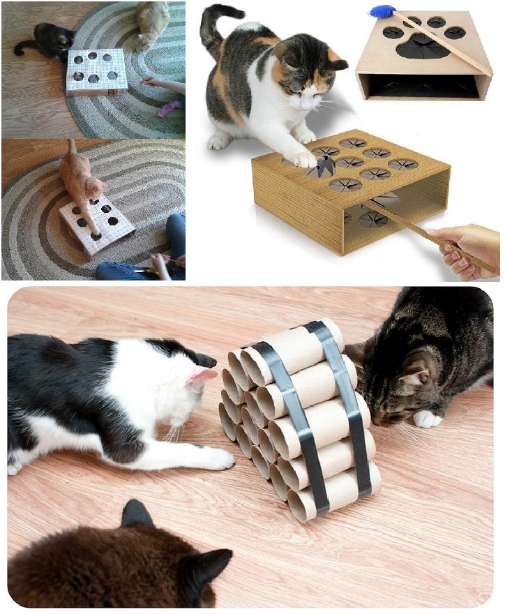Giochi per gatti 10 idee per realizzarli con il fai da te bioradar magazine - Casa per cani fai da te ...