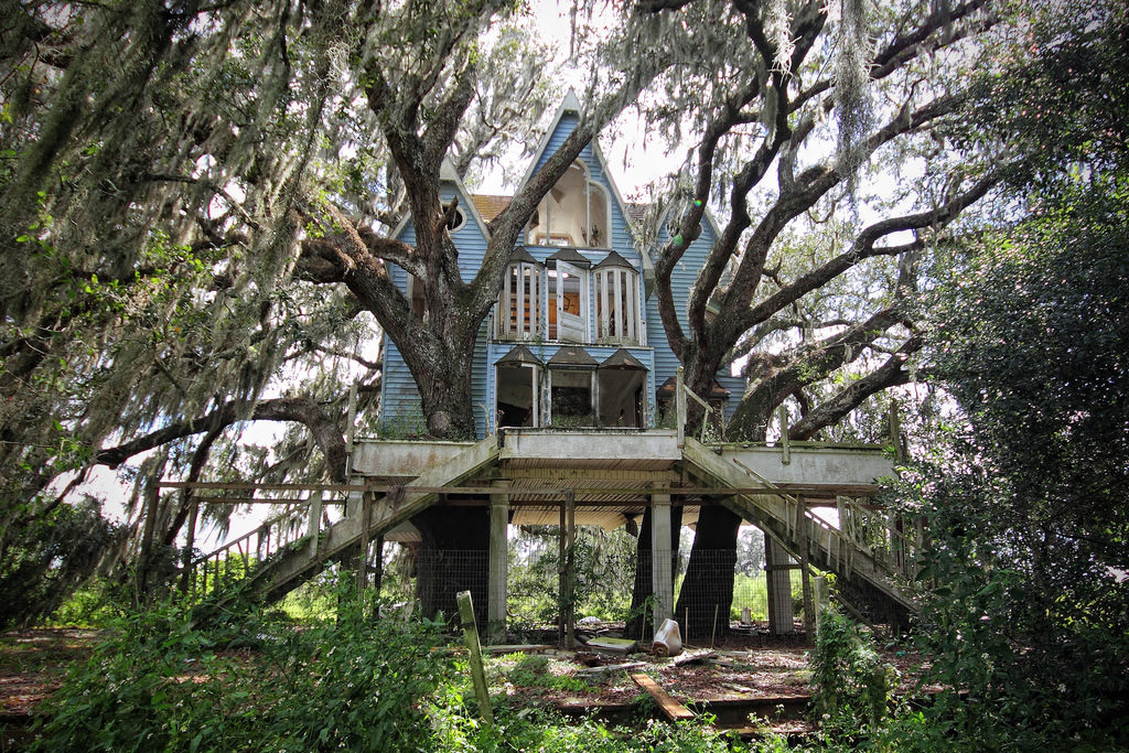 Vivere su un albero: ecco le 13 case più belle