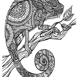 Art therapy 30 disegni da stampare e colorare for Immagini di animali marini da stampare