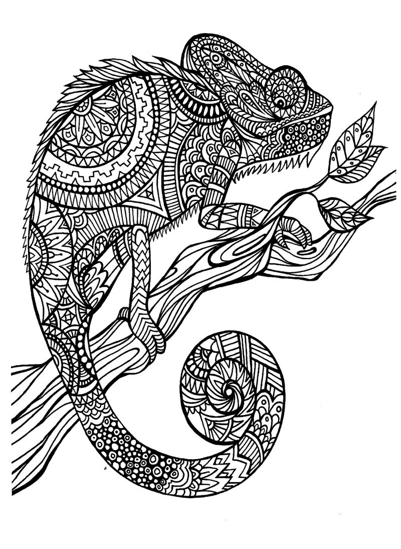 pattern coloring pages print out - photo#28