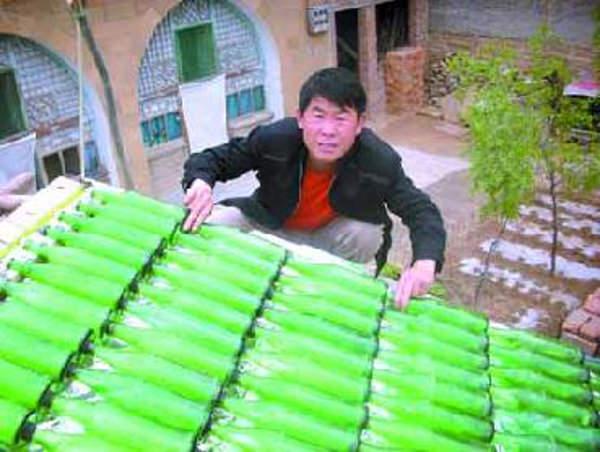 Pannello Solare Con Bottiglie Di Plastica : Sistema per riscaldare l acqua riciclando vecchie