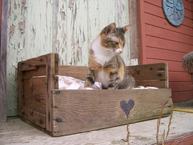 Cuccia fai da te 7 idee per costruire una cuccia per cani - Cuccia per gatti da esterno fai da te ...