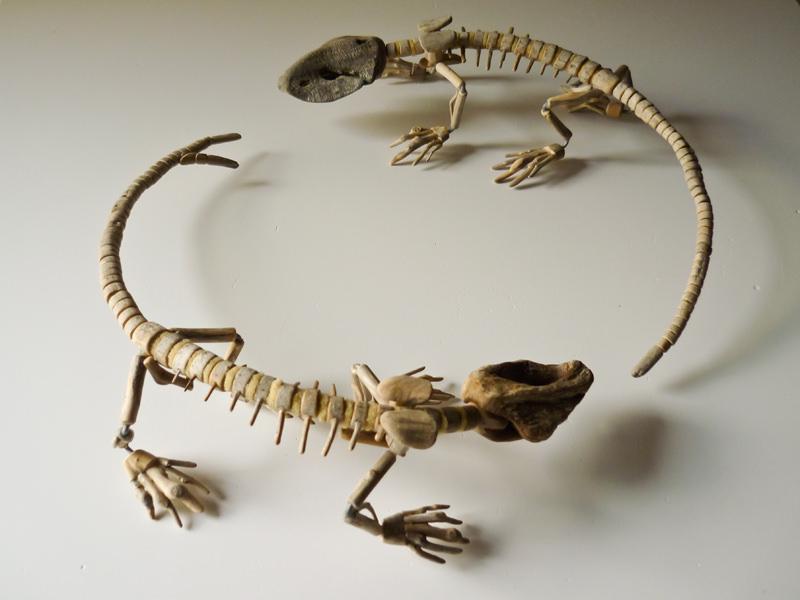 Fragile Skeletons, sculture fossili fatte di legno recuperato sulla spiaggia - Twin lizards