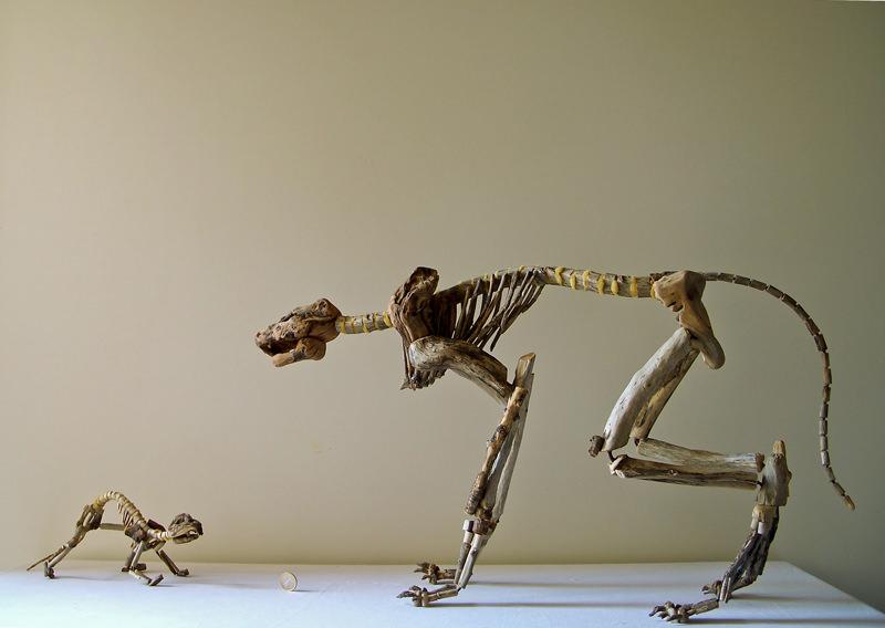 Fragile Skeletons, sculture fossili fatte di legno recuperato sulla spiaggia - Testa o croce