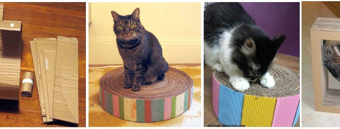 Giochi per gatti 10 idee per realizzarli con il fai da te for Impermeabile per cani fai da te