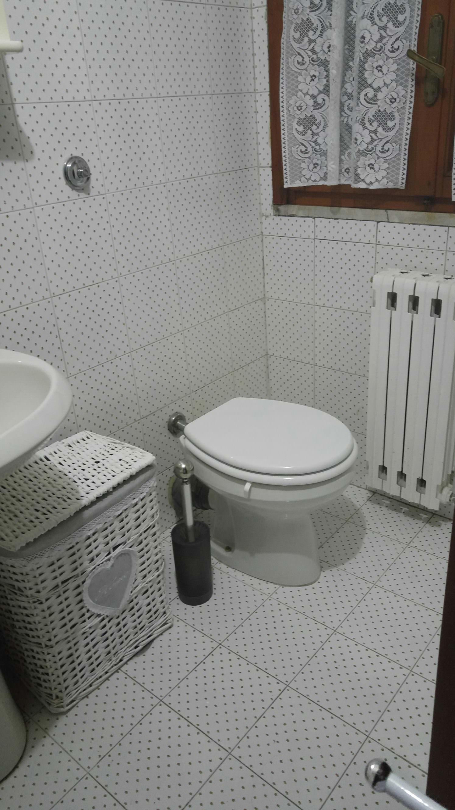 Wizzo il nostro parere sul primo scopino wc ecologico - Bagno ecologico prezzi ...